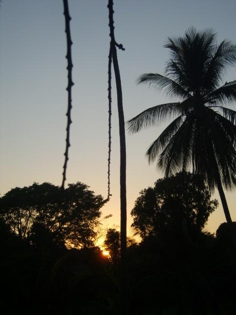 Huajintepec