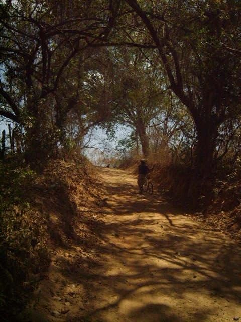 camino a la catalina