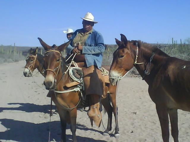 Fotos de La Poza Grande - Vaqueros